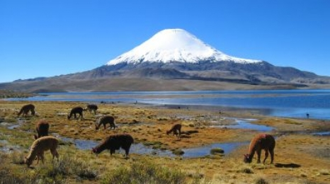 Chile w klasie Premium za 2444 PLN !